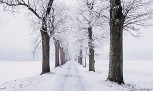 雪不足,2020年はいつまで続く?記録的暖冬で深刻化!!