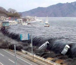 日本海溝や千島海溝で巨大地震が発生すると津波の高さは?